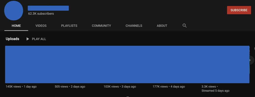 Youtube Channel Fake Views Example